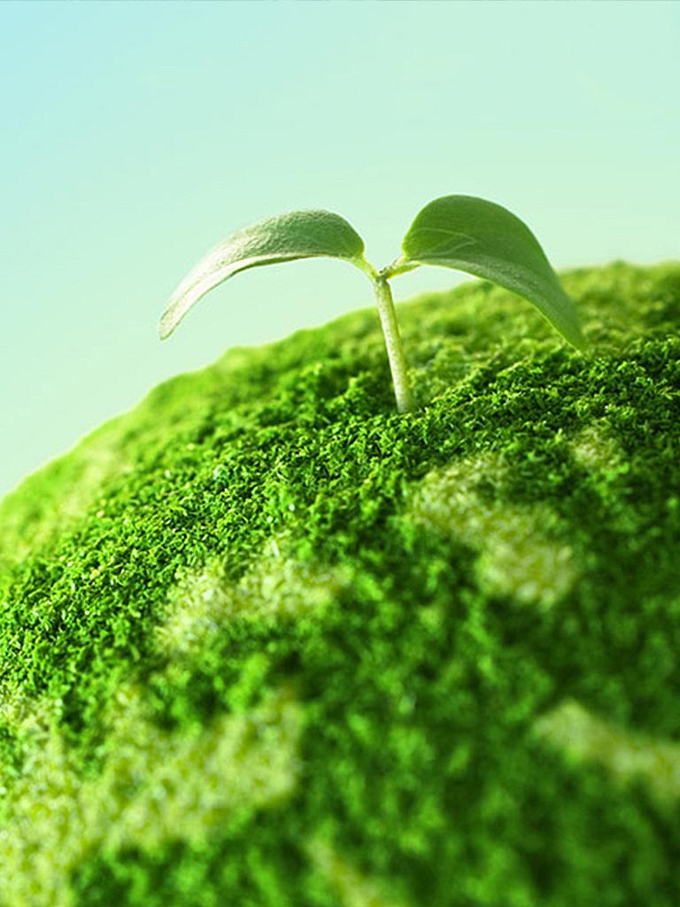 sostenibilita_ambientale_box_home